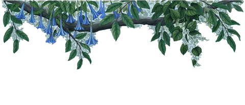 Border Blue Flower Wall Decal Sticker