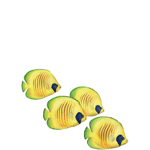 Butterflyfish Large Sea Life Animal Wall Decal Sticker