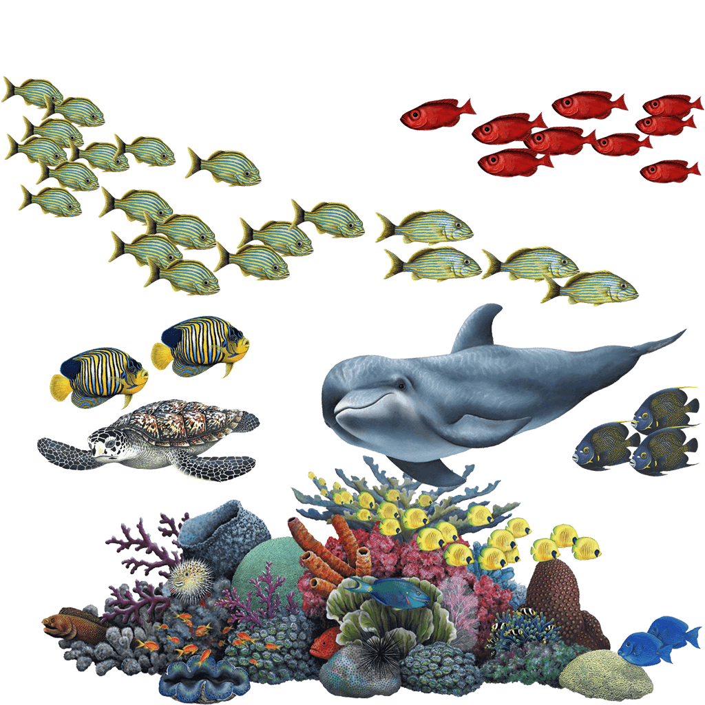 Large Wall Murals Uk Coral Reef Tropical Fish Mural Wall Sticker Set Fills A