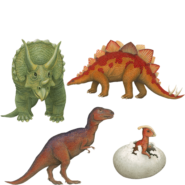 Dinosaur Combo Pack Wall Decals Stickers