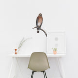 Hawk Bird Wall Decal Sticker