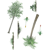Scenery Pack Economy Size Plants Wall Decals Stickers