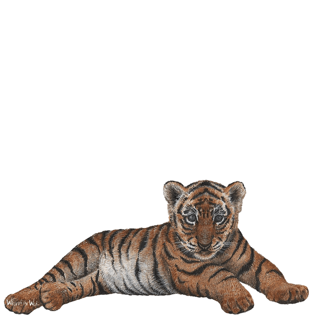 Jungle Themed Wall Stickers Tiger Cub Wall Sticker Create Your Own Jungle Themed