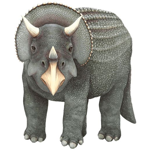 Grey Triceratops Dinosaur Wall Decal Sticker