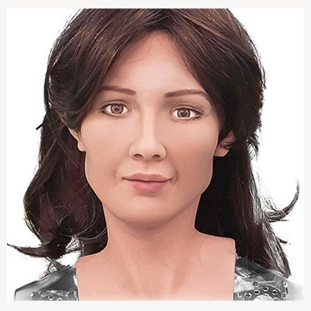 Commission a Humanoid Robot in Your Likeness by Hanson Robotics