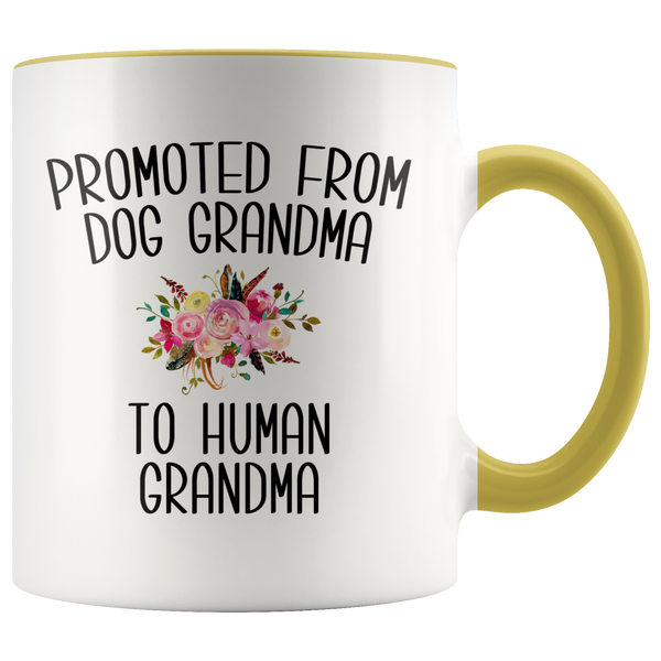 Promoted From Dog Grandma To Human Grandma Mug Grandma Pregnancy Announcement Mother in Law Reveal Gift for Her