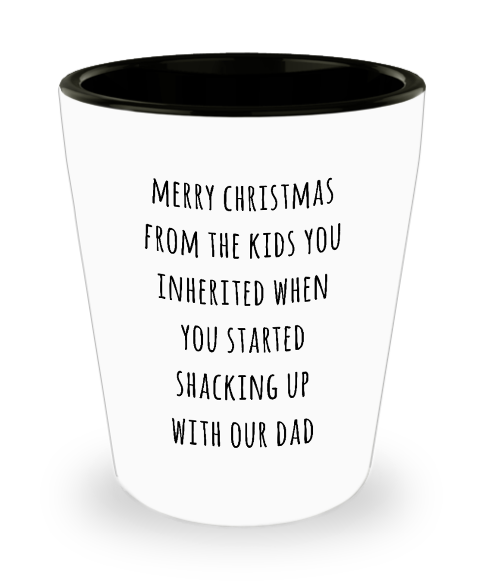 Stepmom Christmas Present Stepmother Gift for Stepmoms Funny Merry Christmas from the Kids You Inherited When You Started Shacking with Our Dad Ceramic Shot Glass