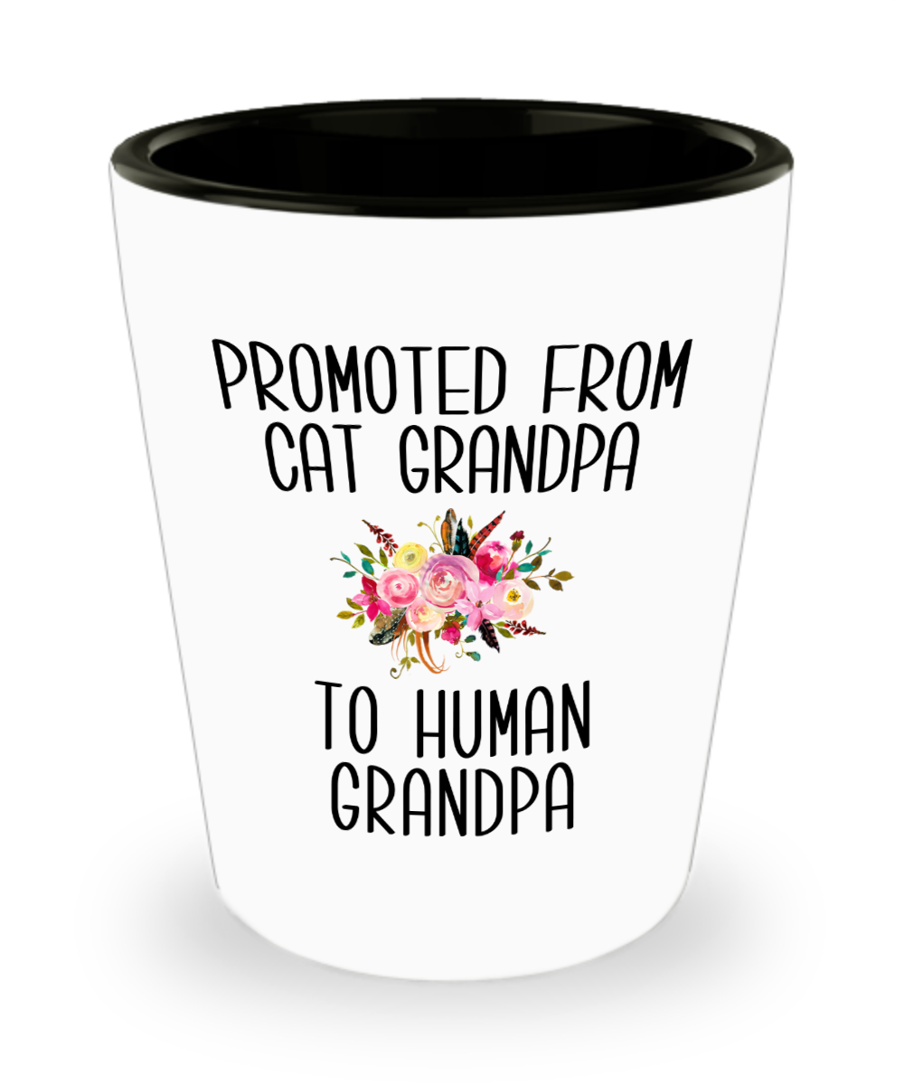 Promoted From Cat Grandpa To Human Grandpa Grandfather Pregnancy Announcement Father in Law Pregnancy Reveal Gift for Him Ceramic Shot Glass