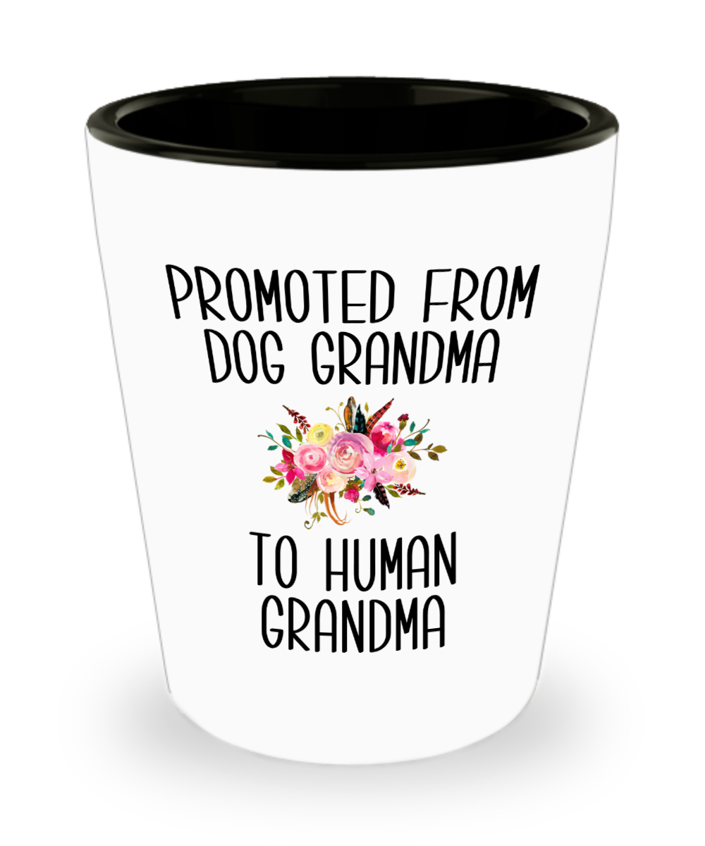 Promoted From Dog Grandma To Human Grandma Grandma Pregnancy Announcement Mother in Law Reveal Gift for Her Ceramic Shot Glass