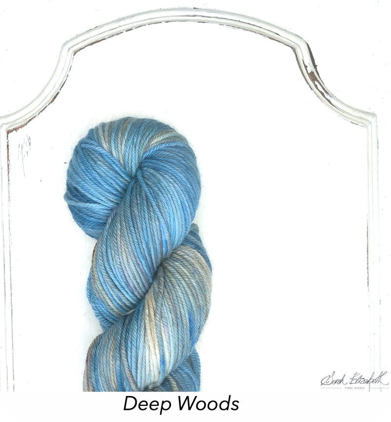 Ecowash Worsted, Modern Dyed, Variegated - Deep Woods