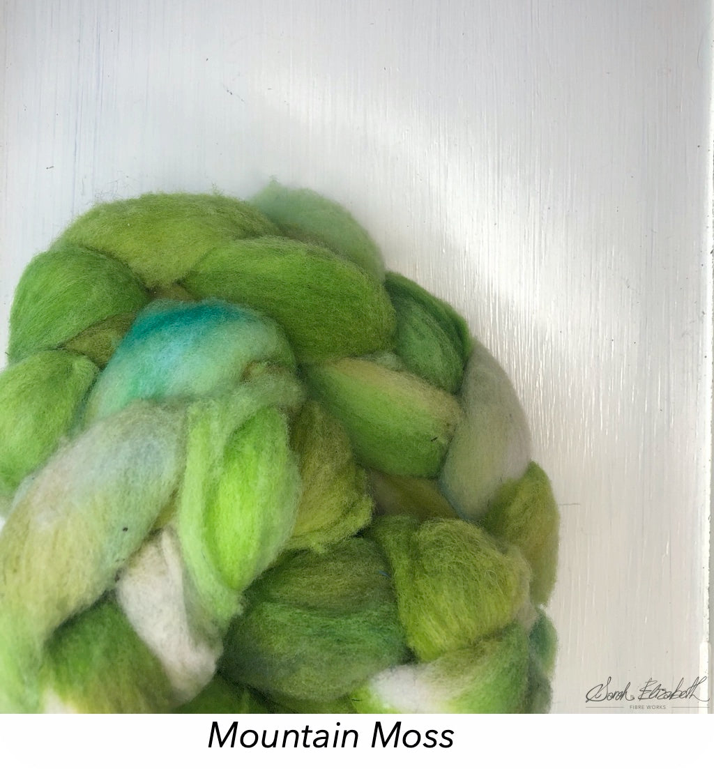 Hand Painted Canadian Merino Roving - Mountain Moss