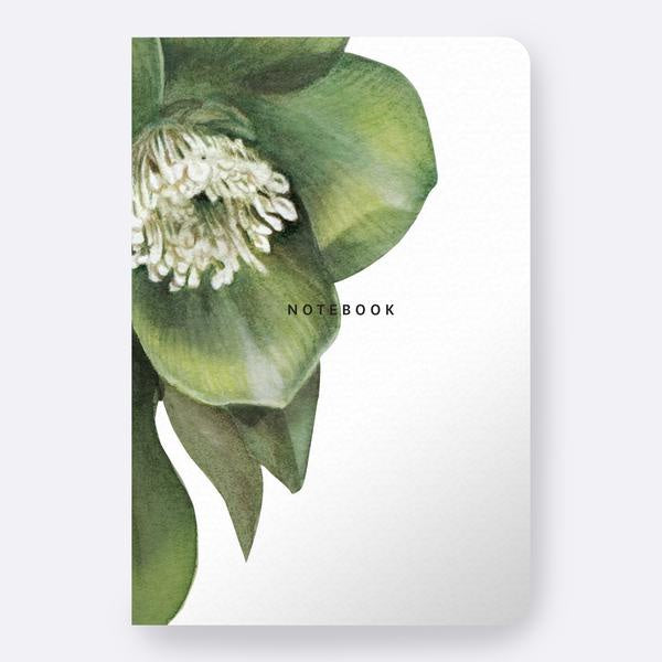 Hellebore Notebook Father Rabbit