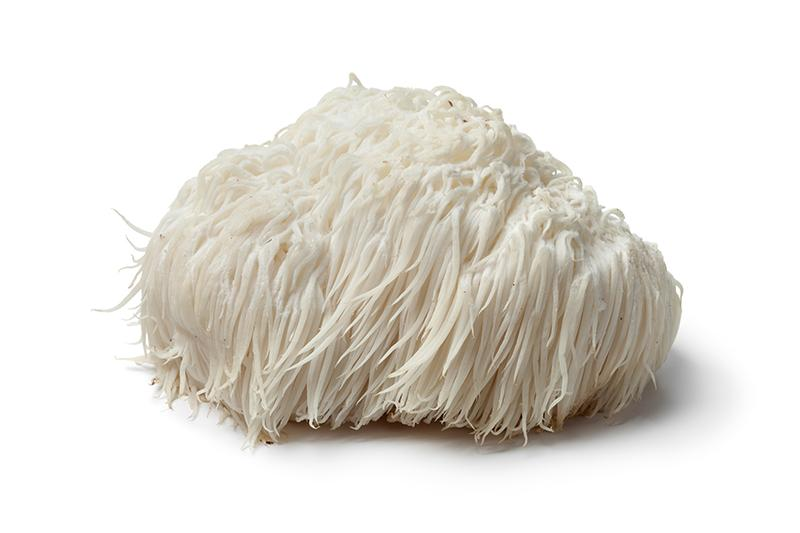 Load image into Gallery viewer, Lion's Mane Mushroom
