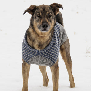 Bird Island Dog Sweater by Sys Fredens
