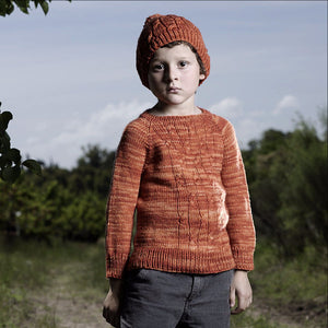 Firefly Sweater & Hat by Terri Kruse-Gift Set with Yarn & Book