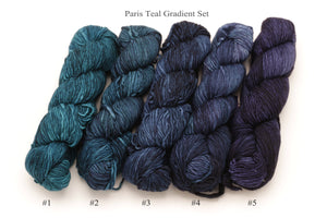 Malabrigo - Merino Worsted Gradient Set