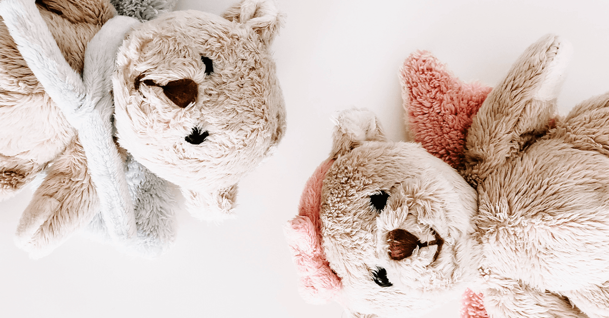 Two light brown teddies lying down on white background