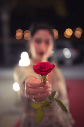 Girl holding a rose