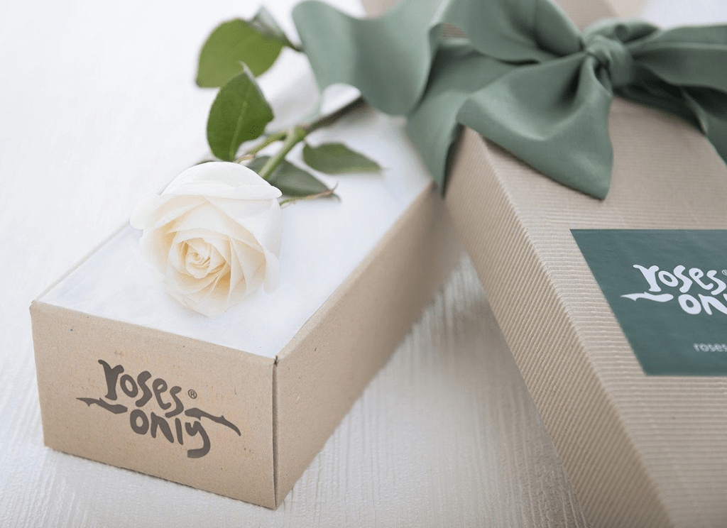 Single White Cream Rose Romantic Gift Box - Roses Only