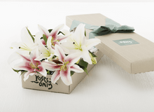10 Pink Lilies Gift Box - Roses Only