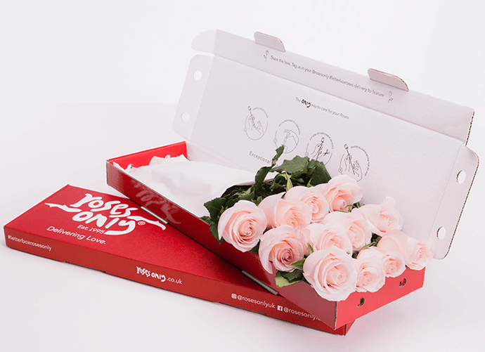 12 Pastel Pink Letterbox Roses - Roses Only