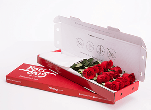 12 Red Letterbox Roses