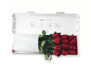 12 Short Red Letterbox Valentines Roses - Roses Only