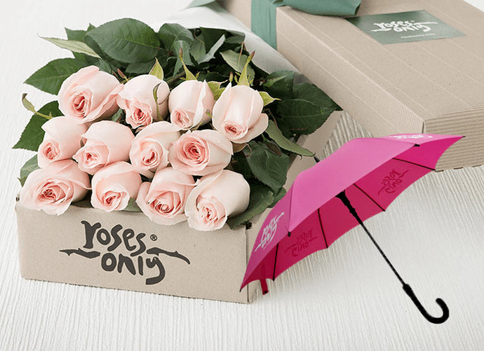 Pastel Pink Roses Gift Box 12 & Umbrella