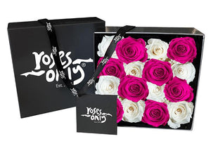 16 White & Pink Infinity Preserved Roses