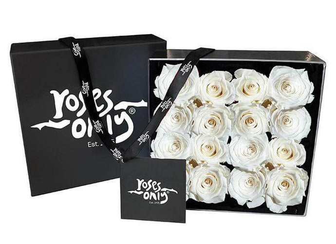 White Cream Infinity Preserved Roses (16 Flowers)