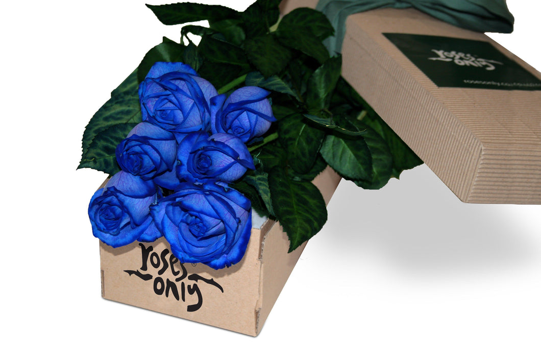 6 Blue Roses Gift Box - Roses Only