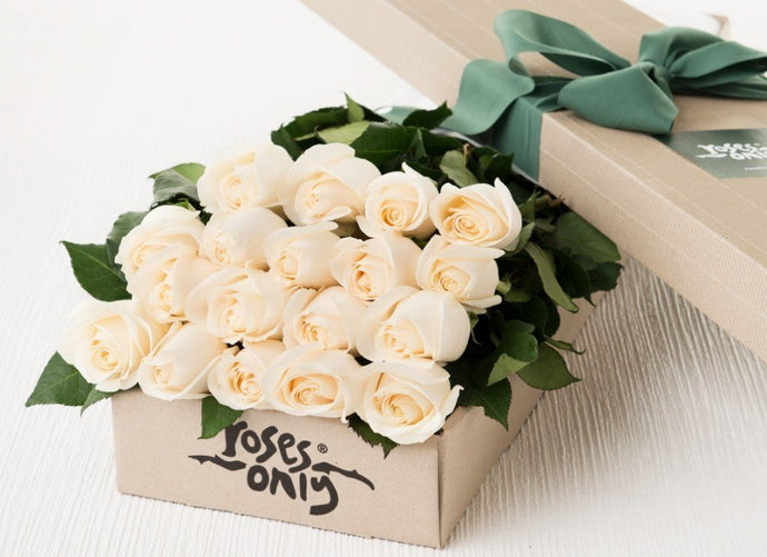 18 White Cream Roses Gift Box - Roses Only