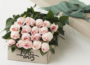 18 Pastel Pink Roses Gift Box - Roses Only