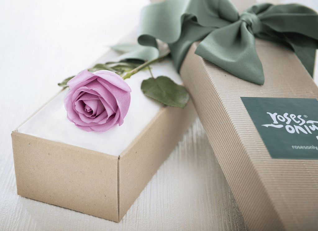 Single Mauve Rose Romantic Gift Box - Roses Only