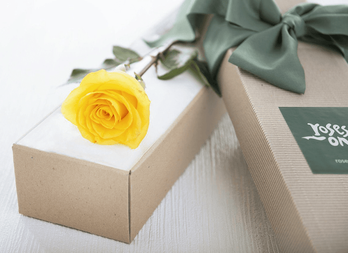 Single Yellow Rose Romantic Gift Box