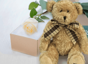 Single White Cream Roses Gift Box & Teddy Bear - Roses Only