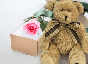 Single Pastel Pink Roses Gift Box & Teddy Bear - Roses Only