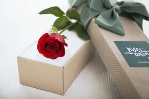 Single Red Rose Romantic Gift Box - Subscription - Roses Only