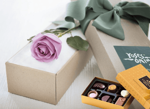 Single Mauve Rose Gift Box & Gold Godiva Chocolates - Roses Only