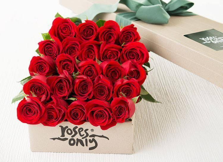 24 Red Roses Romantic Gift Box