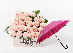 Pastel Pink Roses Gift Box 24 & Umbrella