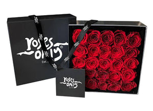 Red Infinity Preserved Roses (25 Flowers)
