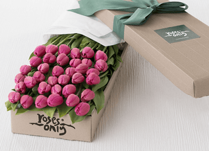 Mother's Day 36 French Tulips Gift Box & Godiva Chocolates - Roses Only