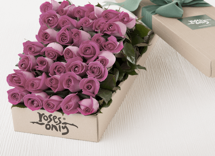 36 Mauve Roses Gift Box - Roses Only