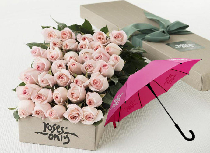 Pastel Pink Roses Gift Box 36 & Umbrella