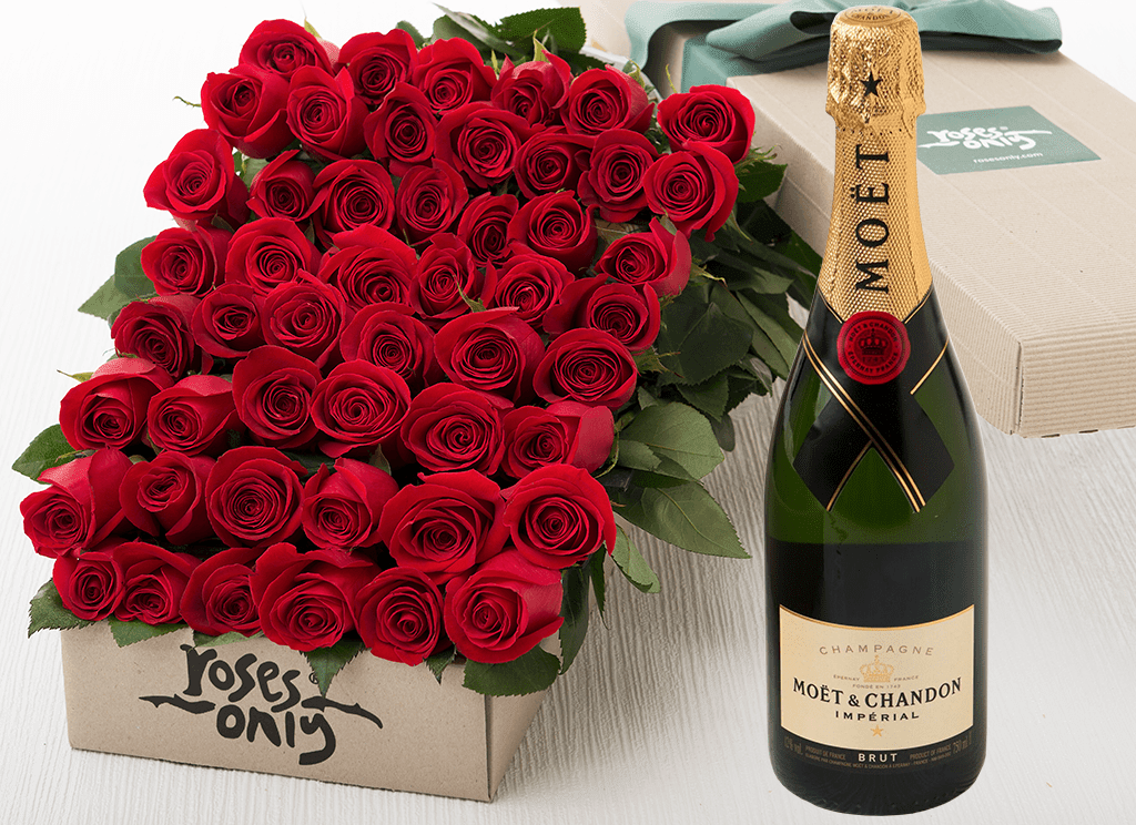 48 Red Roses Gift Box & Champagne - Roses Only