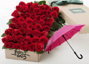 Red Roses Gift Box 50 & Umbrella