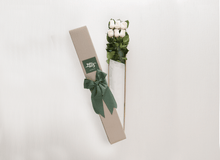6 White Cream Roses Gift Box & Teddy Bear - Roses Only