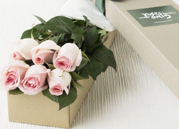 6 Pastel Pink Roses Gift Box - Roses Only