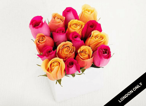16 Bright Mixed Roses Cube Garden - Roses Only